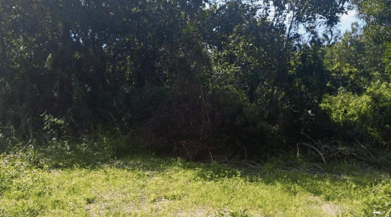 Taman Permai 26