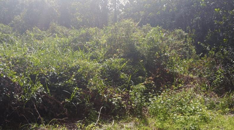 Taman Permai 27