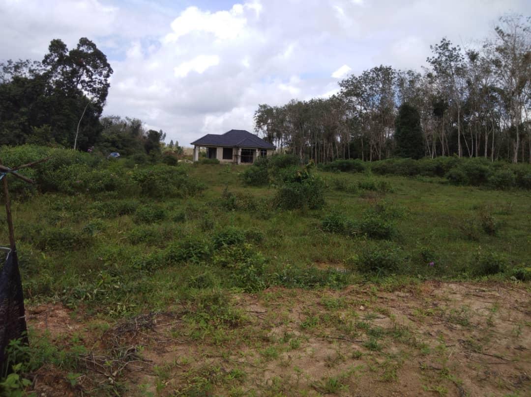 Taman Cempaka (Mukim Jabo) 30